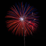Fireworks in the night sky background Stock Images
