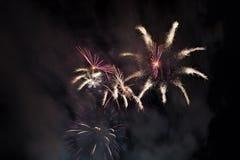 Fireworks on a night sky Stock Photography