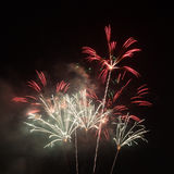 Fireworks in the night sky Royalty Free Stock Images