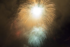 Fireworks in the night sky. Colorful fireworks on the black sky background Royalty Free Stock Image
