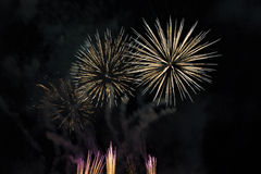 Fireworks on a night sky Royalty Free Stock Image