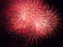 Fireworks in the night sky Royalty Free Stock Photos