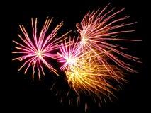 Fireworks 26 royalty free stock image