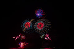 Fireworks over night sky Royalty Free Stock Photo