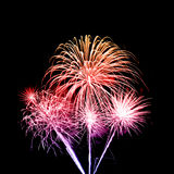 Fireworks over sky Royalty Free Stock Photography