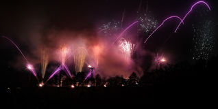 Fireworks with pink and purple sparks and lights Royalty Free Stock Photos