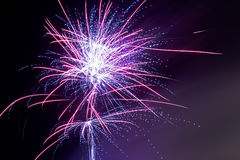 Fireworks - Purple Haze. An image of a purple fireworks display Royalty Free Stock Photos