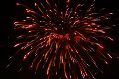 Fireworks radiate Royalty Free Stock Images