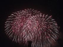 Fireworks red Royalty Free Stock Photography