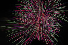 Fireworks. Red White and Blue fireworks Royalty Free Stock Photos