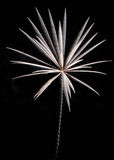 Fireworks rocket Royalty Free Stock Photo