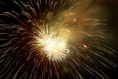 Fireworks, salute. Royalty Free Stock Image