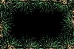 Fireworks salute frame green Stock Images