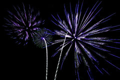 Fireworks salute holiday Royalty Free Stock Photo