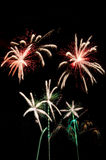 Fireworks show. Fireworks on a dark background Royalty Free Stock Photo