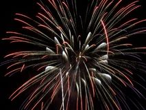 Fireworks Show IV Royalty Free Stock Images