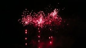 Fireworks show in the park stock footage