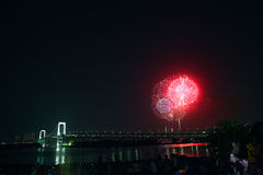 The fireworks show in tokyo Royalty Free Stock Photography