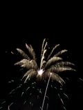 Fireworks Show VIII royalty free stock photo