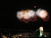 Fireworks in singapore. This is a picture of a fireworks display in front of the singapore marina bay. Statue spewing water is the Singapore Merlion Royalty Free Stock Photography