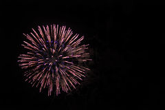 Fireworks. Single firework captured against black background Royalty Free Stock Photo