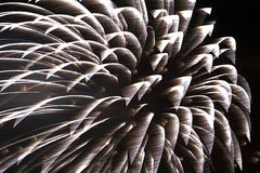 Fireworks - single shell. Fireworks - Long time exposure of a single shell. Wind and motion render shapes resembling a palm tree top stock photo
