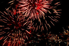 Fireworks in the sky Royalty Free Stock Image