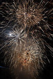 Fireworks in the sky Royalty Free Stock Images