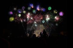 Fireworks Spectators Stock Image