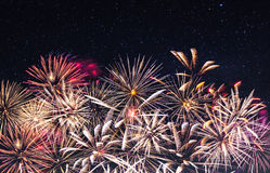 Fireworks and starry sky Royalty Free Stock Image