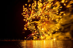 Fireworks in summer royalty free stock photo