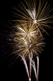 Fireworks. To celebrate the arrival of the new year or Thanksgiving day Royalty Free Stock Photos