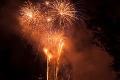 Fireworks between trees silhouettes. Retail of Fireworks between trees silhouettes Royalty Free Stock Photo