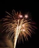 Fireworks. Up in the sky Royalty Free Stock Photo