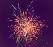 Fireworks  of various colors over dark sky. soft f. Colorful fireworks of various colors over dark sky. soft focus Royalty Free Stock Image