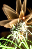 Fireworks3 Photographie stock