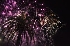 Firewors au cours de la nuit à la plage Image libre de droits
