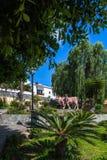 Firgas, Gran Canaria. Park in Firgas, Gran Canaria Stock Image