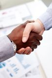 Firm handshake. Vertical shot of a firm business handshake guaranteeing safety and evoking trust royalty free stock image