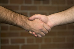 Firm Handshake Royalty Free Stock Photo