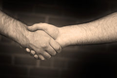 Firm Handshake Royalty Free Stock Photography