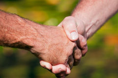 Firm handshake between two men Stock Image