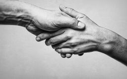 A firm handshake between two partners. Black and white image on white  background Stock Photo