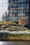 Firma i środowisko Zdjęcia Stock