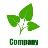 Firma zielony środowiskowy logo Obraz Stock