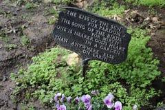 Firme adentro un jardín de flores Imagen de archivo libre de regalías