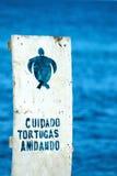 Firme con la advertencia española al cuidado de jerarquías de las tortugas de mar encendido Fotografía de archivo