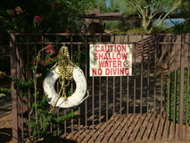 Firme el agua poco profunda de la precaución ningún salto con el anillo vivo Imagen de archivo libre de regalías