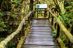 Firme ningún 3 en Ang Ka Luang Nature Trail Fotografía de archivo
