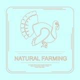 Firmenzeichen der natürlichen Landwirtschaft Lizenzfreies Stockbild